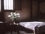 Lilies in Jug Bedroom