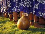 Hula Dancers  Kauai  Hawaii  USA