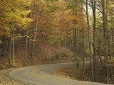 Road Winding Through Autumn Colors  Pine Mountain State Park  Kentucky  USA
