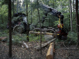 Valmet Forwarder  Green Certification  Logging  Maine  USA