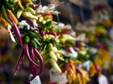 Chili Peppers in Pike Place Market  Seattle  WA