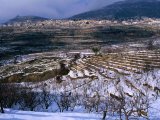 Snow Covered Fields and Village in the Qadisha Valley  Bcharre  Lebanon