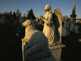A View of Statuary at the Congressional Cemetery
