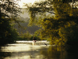 Kayaking on the Susquehanna River in the Sheets Island Natural Area