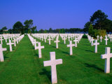 Rows of White Crosses at American Military Cemetery  Colleville-Sur-Mer  France