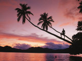 Man  Palm Trees  and Bather Silhouetted at Sunrise