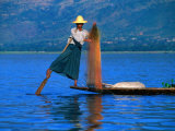 Intha Fisherman Tending to Nets and Rowing  Inle Lake  Shan State  Myanmar (Burma)