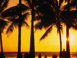 A Waikiki Winter Sunset  Honolulu  Oahu  Hawaii  USA