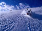 Skier Descending in Powder Snow  St Anton Am Arlberg  Vorarlberg  Austria
