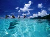 Four Women Paddling Outrigger Canoe on Lagoon at Haapiti  Moorea  the French Polynesia