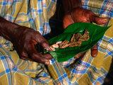 Indigenous Veddah or Wanniyala-Aetto Man Holding Betel Nuts  Colombo  Sri Lanka
