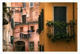 Inside Yard  Venice