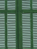 Green and White Shutters