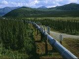 The Trans-Alaska Pipeline Runs Through the Alaskan Wilderness