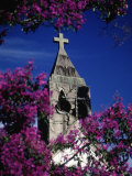 St Anthony Church  Brazil