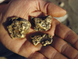 Gold Nuggets Mined in Alaska