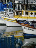 Fishing Boats at Fishermans Wharf  San Francisco  California  USA