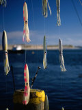 Fishing Lures Hanging with Ocean Behind  Cape Cod  Massachusetts  USA