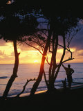 Man and Surfboard at Sunrise  Cabarete  Dominican Republic