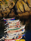 Row of Fishing Boats Moored in a Small Harbour Near Plouhinec  Cape Sizun  Brittany  France