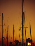 Sunset and Boat Masts  Ventura Harbor  CA