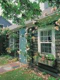 Summer Flower  Doorway  Nantucket  MA