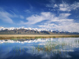 Ruby Mountains and Slough along Franklin Lake  UX Ranch  Great Basin  Nevada  USA