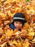 Child Playing in Leaves in Kadriorg Park  Tallinn  Estonia