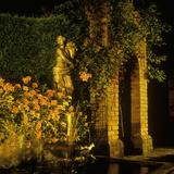 "Garden Lighting  Fountain  Statue and Pool at Night Pelargonium ""King of Balcon"""