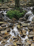 Water Flows Down a Rocky Hillside in Caldenonia State Park  Pennsylvania