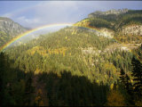 A Rainbow Arches Above an Evergreen Forest in the San Juan Mountains