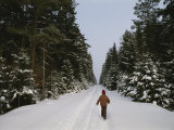 Polish Child Walking on a Snowy Road in Bialowieza Forest