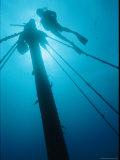 A Diver Swims Near the Mast of a Shipwreck Near Bermuda