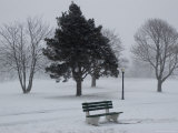 Park Bench by a Snow Covered Golf Course