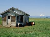 Farm Scene West of Chiloguin  Oregon  Looking Toward Mount Mcloughlin