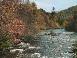 An Autumn Scene Along Little River in Tennessee