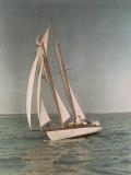 Sailboats Along the Gulf Coast