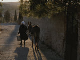 A Woman and Her Donkey Walk Down a Street in Pyrgi  Greece