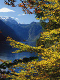 Autumn Foliage Scenic with River View  Berchtesgaden National Park