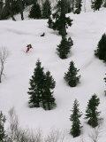 A Skier Makes His Way Down a Hill Below Kilinmarg  Gulmarg  Kashmir