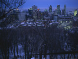 View of the Montreal Skyline from High Atop Mount Royal Park