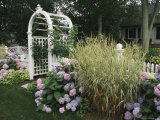 Arbored Entryway with Ornamental Grasses and Blooming Hydrangeas