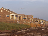 A Row of Rental Cottages on a Seaweed Strewn Beach