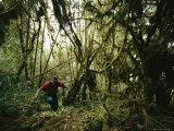 A Cartographer Hiking Through Jungle Terrain
