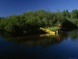 Fshing in the Fox River  Fox River  Upper Peninsula  Michigan