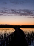 A Walkway Leads Through Marshes on the Way to the Beach  Prince Edward Island National Park  Canada