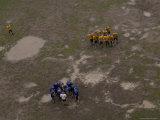 Football Players Huddle on a Muddy Field