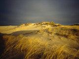 Sand Dunes and Beach Grass  Nauset Beach  Cape Cod National Seashore  Massachusetts
