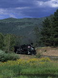 A Steam Engine Chugs Through a Valley Near a Field of Wildflowers  Silverton  Colorado