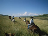 A Group of Cowboys Cross a Field Looking for the Herd